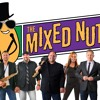 The Mixed Nuts (New Orleans) - Motown Review Sample (Live)