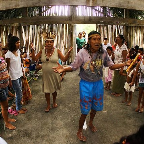 Indígenas de Peruíbe, no litoral de São Paulo, correm risco de perder terras
