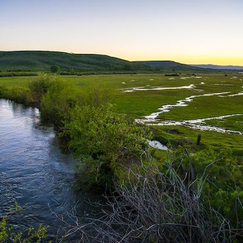 Episode 11: How Water Management and Flexibility Can Save the Colorado River
