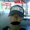 JOMBLO WOLES - LAGU PARA JOMBLO (olik)