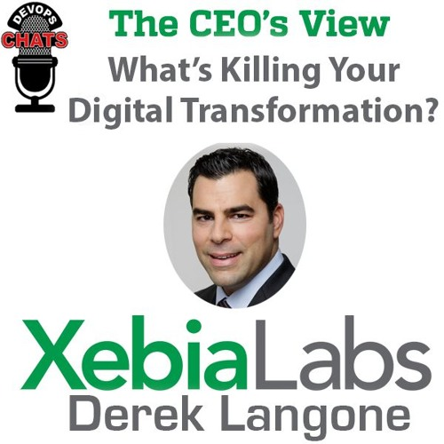 The CEO's View: Whats killing your digital transformation? Hint: Might be you