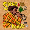 Dub Unit ft. Speng Bond - Ganja Man (Chief Rockas Remix)