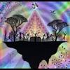 Zensight -  Celebration Session Trance