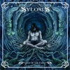 Sylosis - Where The Sky Ends (Cover)