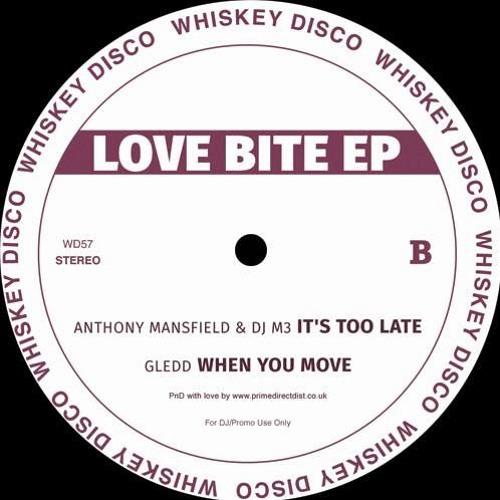 PREMIERE: Gledd - When You Move [Whiskey Disco]