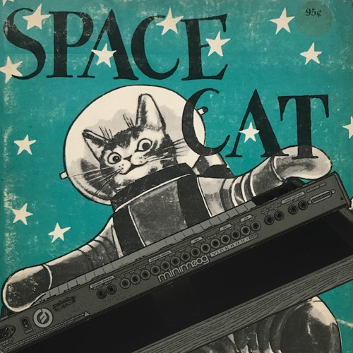 Theme for Space Cat