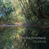 'On the Riverbank: Ulu Muda' - Recorded in Malaysia - Album Sample