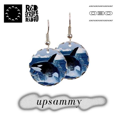 Deep Sea Discotheque Radio 030 ~ Upsammy