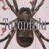【Oliver】Tarantula【Original Song】