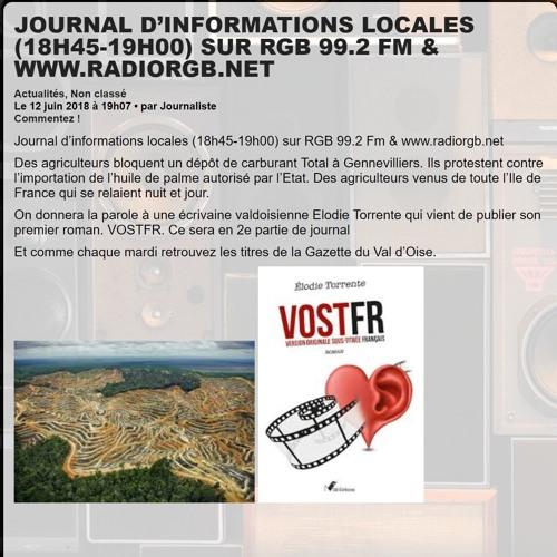 ITW Elodie Torrente, auteur à propos de son roman VOSTFR au journal sur RGB le 12 - 06 - 2018