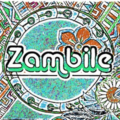Dont speak gwen stefani( Zambile  re-edit ) no doubt