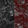 BDd007 The Chronics - Primitive Reaction EP