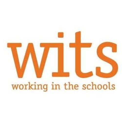 7 CPS Schools Offering WITS Summer Literacy Program