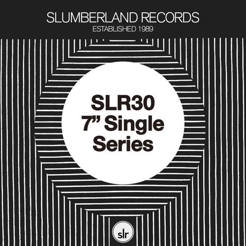 SLR30 Single Series