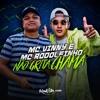 MC Vinny e MC Rodolfinho - Não Grita, Chama Portada del disco