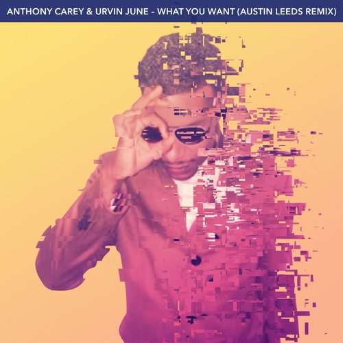 Anthony Carey & Urvin June - What You Want (Austin Leeds Remix)