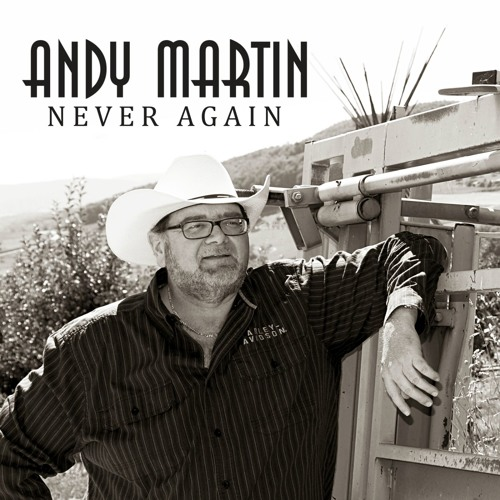 Andy Martin - Never Again
