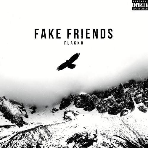 Fake Friends by Flacko