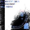 RL Grime - I Wanna Know (Feat. Daya) (Mise Remix)