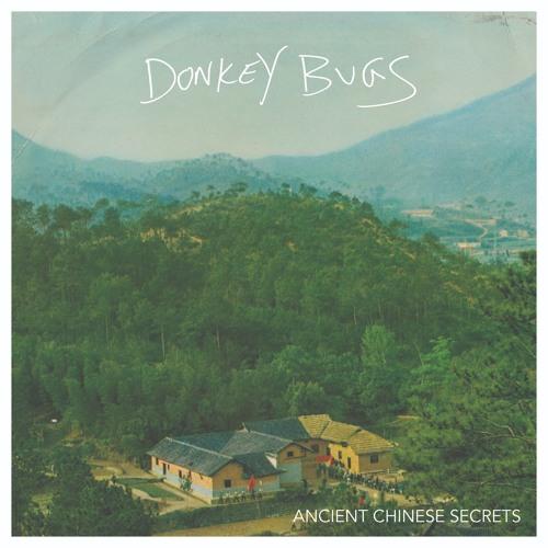 Donkey Bugs - Three Times Fast