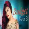 Budget - Kaur B