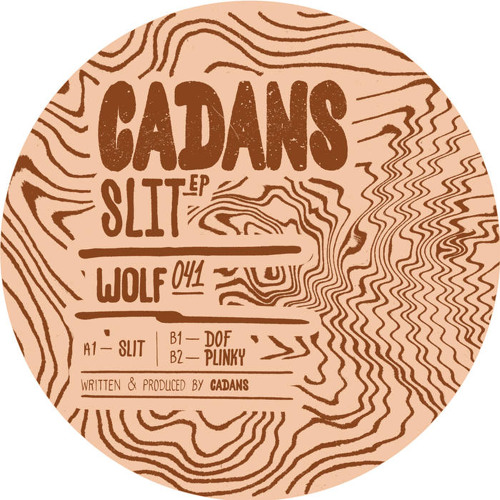 C. CADANS - PLINKY (wolfskuil)