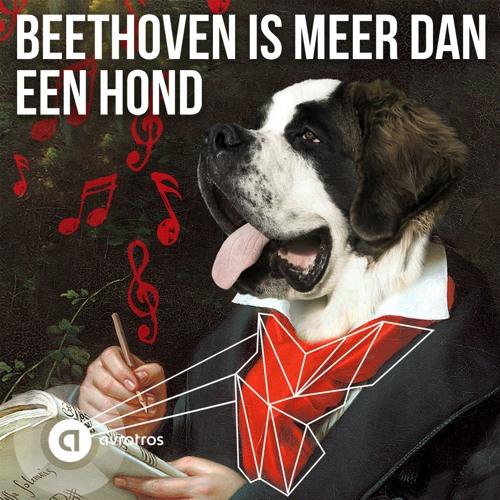 Beethoven Is Meer Dan Een Hond