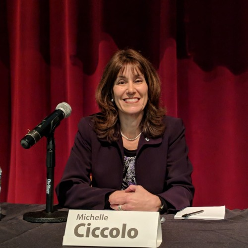 Episode #10 - guest Michelle Ciccolo, Candidate for MA State REP, 15th Middlesex District