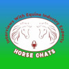 262: Rena Figueredo (Williams) - Horses Are a Wonderful Therapy For People Who Live a Stressful Life