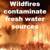 Wildfires contaminate fresh water sources