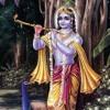 Srila Prabhupada ~ Purport on Amara Jiva: