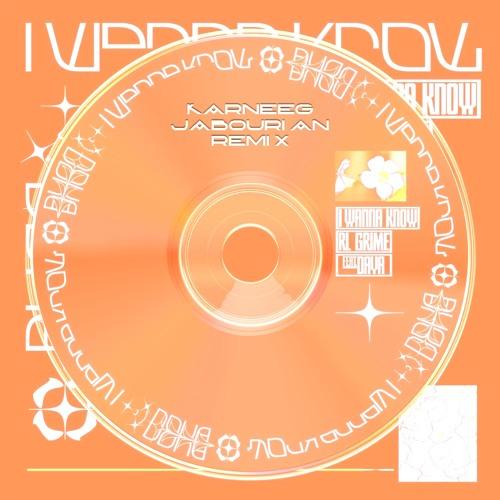 RL Grime - I Wanna Know (ft. Daya) (Karneeg Jabourian remix)