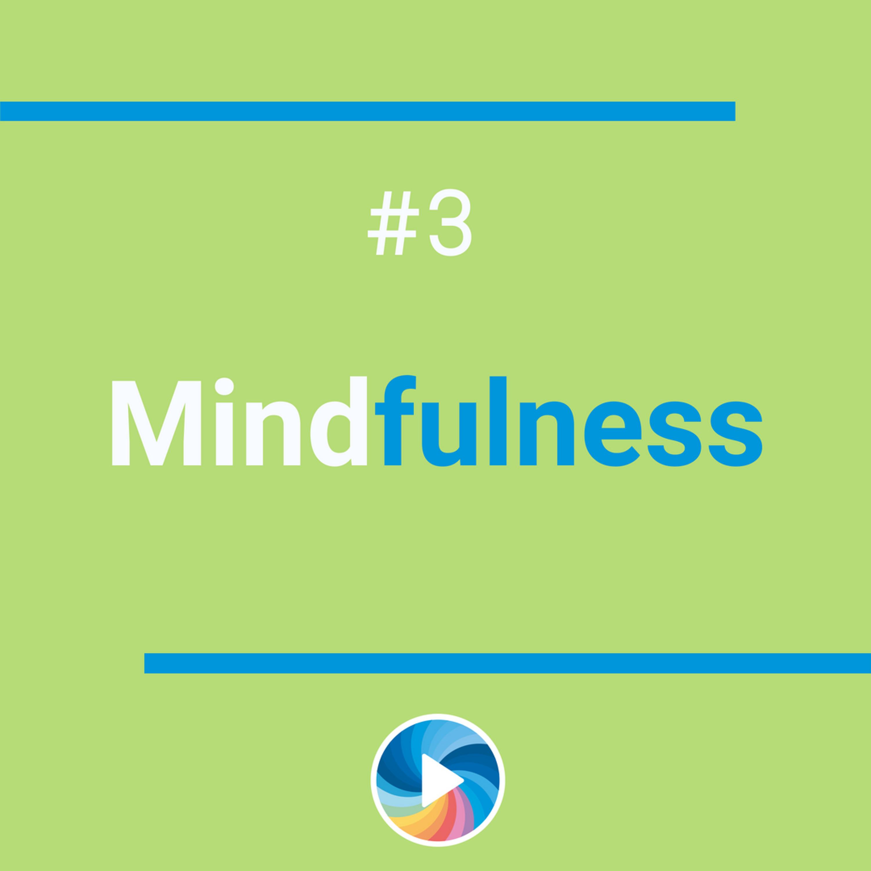 #3 | Mindfulness