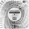 Federico Guglielmi - Psychedelic Journey (Original Mix) [EDM Underground] mp3