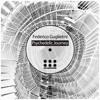 Federico Guglielmi - Psychedelic Journey (Analog Trip Remix) [EDM Underground] mp3