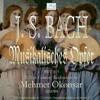 "JSBach - MusicalOffering - MehmetOkonsar - Track16: ""Canon Perpetuus"""