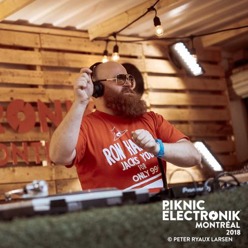 Skatebård - Piknic Électronik 2018-06-03 Part 2