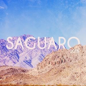 Goldroom - Saguaro Mix 2018-06-20 Artwork