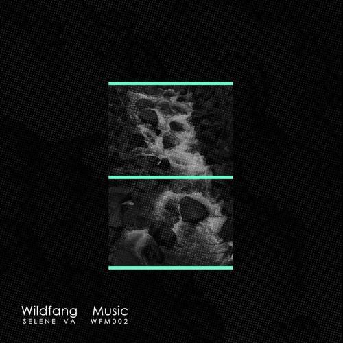 PREMIERE : Lars Neubert - Feel (Original Mix) [Wildfang]