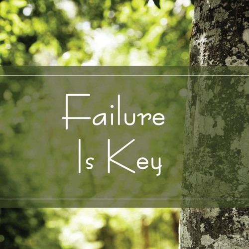 Failure Is Key