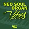 Big Citi Loops - Neo Soul Organ Vibes