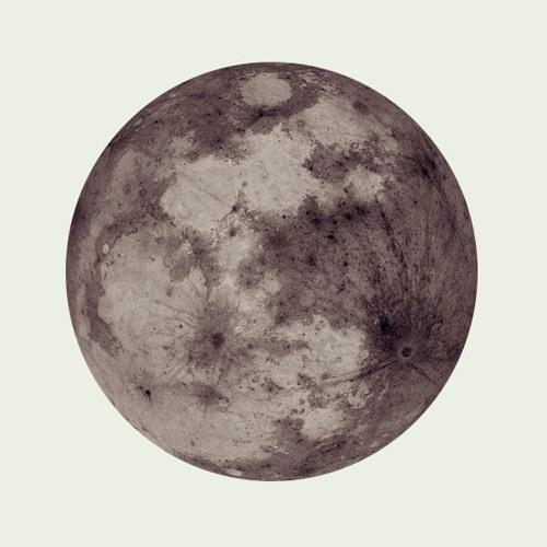 Wolfe - Lunar Sessions Demo