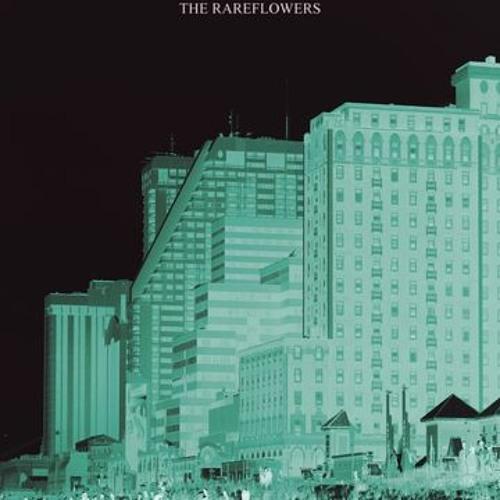 "The Rareflowers - ""Trip into the Sun"""