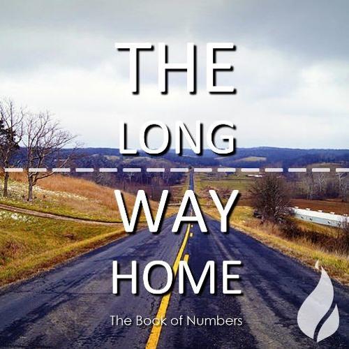 The Long Way Home // Numbers 31-36 (Bankstown 4pm, 24 Jun 2018)