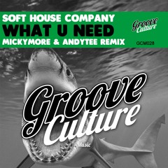 Soft House Company - What You Need - Micky More & Andy Tee Remix