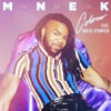 MNEK ft. Hailee Steinfeld - Colour (DIY Acapella) FREE.mp3