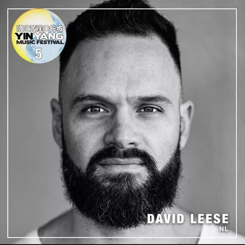 David Leese @ YinYang Music Festival 2018, Great Wall - Tianjin (16-06-2018)
