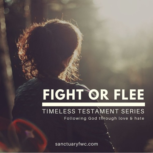 Timeless Testaments: David (Fight or Flee)