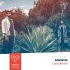 Premiere: Amentia - Cheyenne [Sol Selectas]