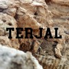 Terjal mp3